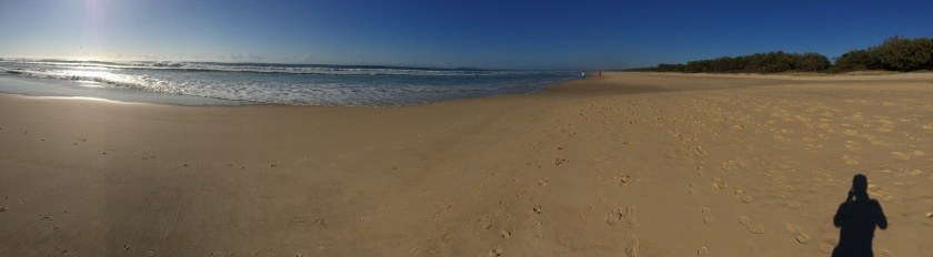 BeachBruns