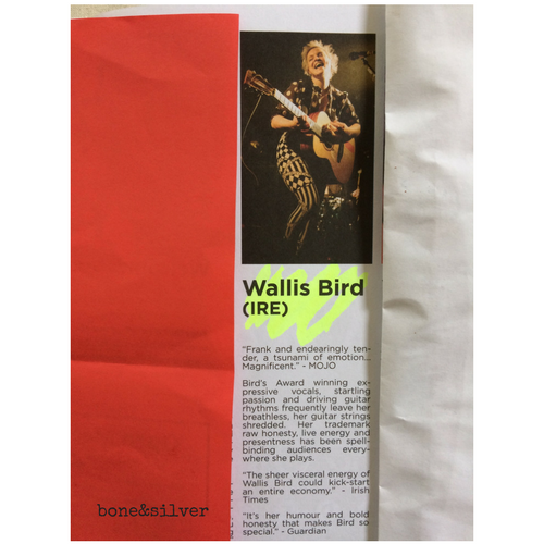 Wallis Bird performing in Australia