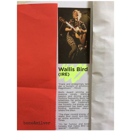 Wallis Bird performing in Australia