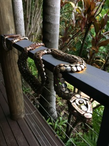 Snake on a railing #Australia #ecovillage #rainforest #over50