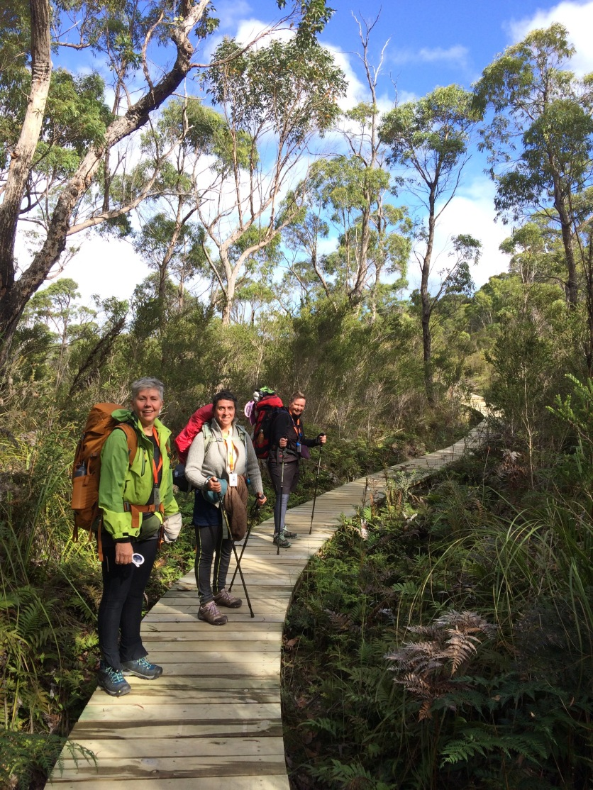 Four friends over 50 having an adventure in the wilderness of Australia