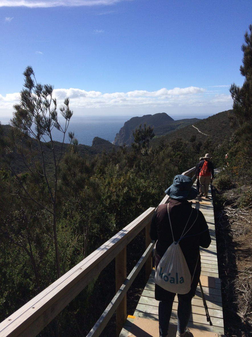 Walking for wellbeing through coastal plains in Tasmania, Australia