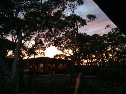 #sunrise #dawnsky #gratitude #threecapestrack #australia #tasmania