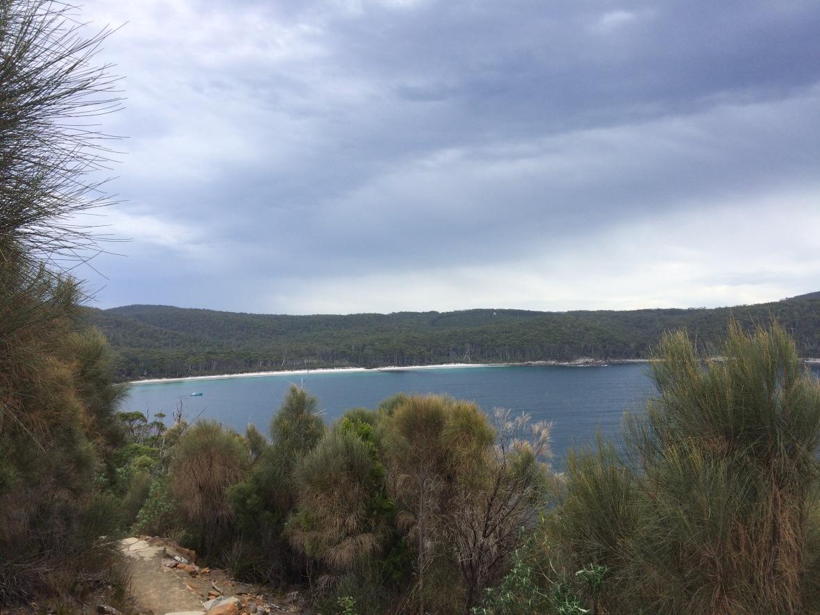 So tired but determined #threecapestrack #tasmania #over50 #hike #wilderness #australia
