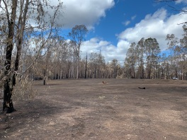 Surviving a bushfire in Australia takes courage & preparation #resilience