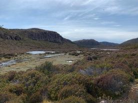 boneAndsilverBlog_Tasmania3